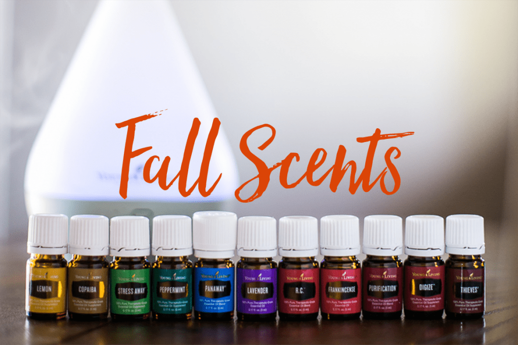 How to use Essential oils to create an amazing fall scent in your home. DIY essential oil blends for fall. Autumn blends for diffusing. www.byoilydesign.com YL#3177383