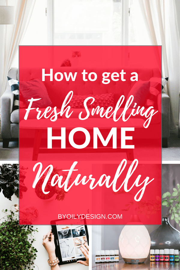 naturally fresh smelling home with plants and essential oils showing how to make your house smell good