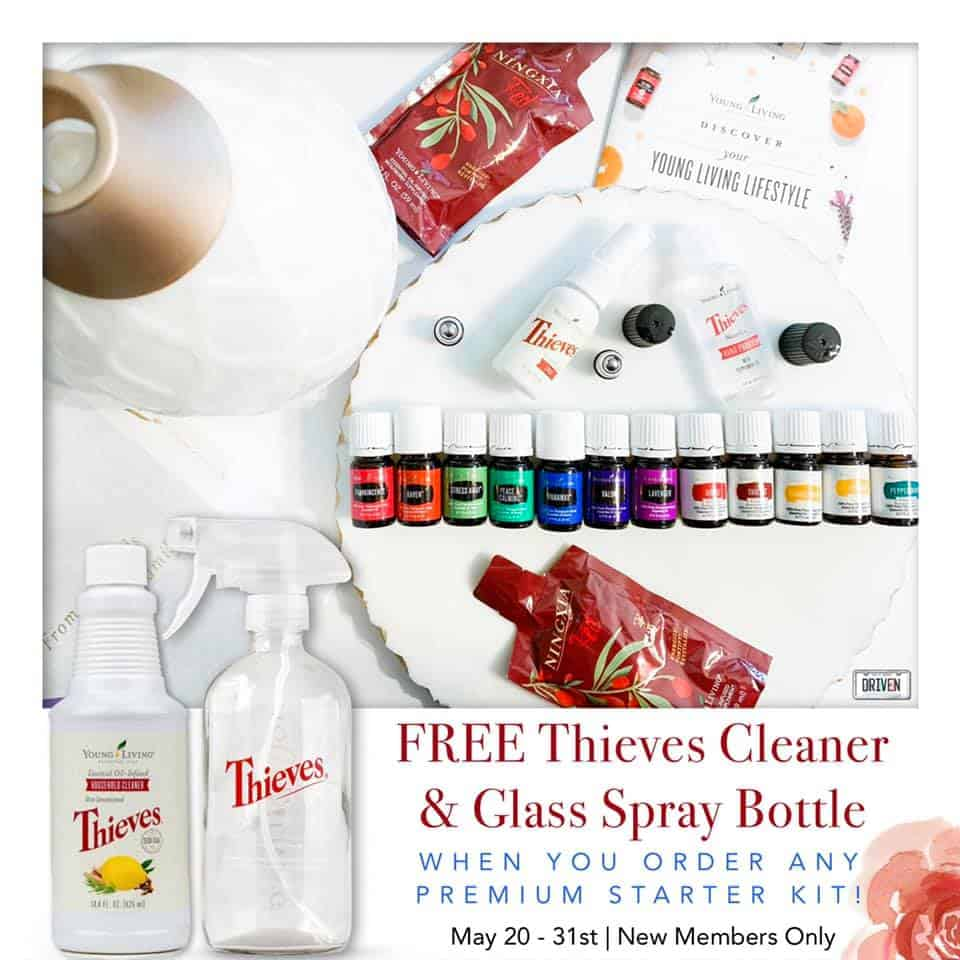 Free Thieves cleaner & glass spray bottle with purchase of the premium Starter Kit