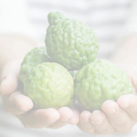 woman holding a handful of Bergamot